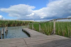 vizes élőhelyek-Tisza
