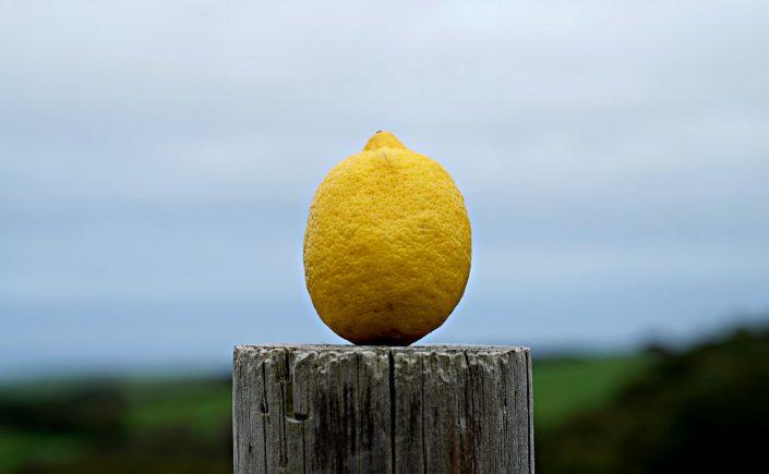 A citrom és a környezet