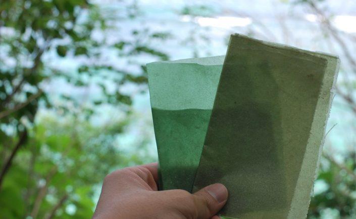 Ehető,biológiailag lebomló hínáralapú csomagolás